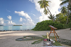 A champagne flute? (BoraBoraPhotosVideos) Tags: borabora frenchpolynesia island tahiti paradise southpacific holidays bestvacations photooftheday picoftheday wedding polynesian honeymoon wonderfulplaces