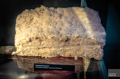 Cotton fibers mixed with phenol resin to make duroplast (hjakse) Tags: germany deutschland tyskland zwickau sachsen horch audi autounion ddr museum car sachsenring gdr dkw wanderer saxony trabant ifa duroplast