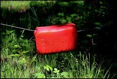 Pirmil (Sarthe) (gondardphilippe) Tags: pirmil sarthe maine paysdelaloire photographie photography vert green rouge red campagne colors couleurs extérieur nature quiet rural texture outdoor zen