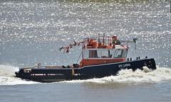 GPS Cambria (1) @ Gallions Reach 21-06-18 (AJBC_1) Tags: riverthames gallionsreach london tug gpsmarine ©ajc dlrblog england unitedkingdom uk ship boat vessel northwoolwich eastlondon newham londonboroughofnewham ajbc1 gpscambria nikond3200 stantug1606 damen damenshipyardsgroup