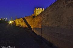 Lienzos de la Alcazaba (A Bravo) Tags: alcazaba badajoz visitaguiada