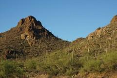 Gates Pass Road - Saguaro West (CHWVB) Tags: saguaro wüste tucson kaktus sonora desert arizona usa cactus