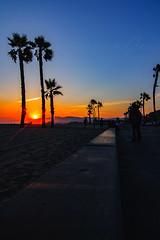 36 (morgan@morgangenser.com) Tags: sunset red orangeyellow blue pretty cloud silhouette sun evening dusk palmtrees bikepath sand beach santamonica pacificpalisades beautiful black dark cement amazing gorgeous inawe ca photobymorgangenser