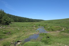 roughtor67 (West Country Views) Tags: rough tor cornwall bodmin moor scenery