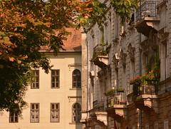 Károlyi kert (jeneizsu) Tags: budapest hungary artnouveau sétaműhely citycenter walkingtour 5thdistrict