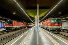 1144 037 1144 100 1144 270 ÖBB Wien Franz Josef Bahnhof 31.07.18 (Paul David Smith (Widnes Road)) Tags: 1144 037 100 270 öbb wien franz josef bahnhof 310718 1144037 1144100 1144270