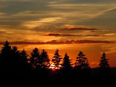 sunset (germancute) Tags: nature outdoor sunset sonnenuntergang