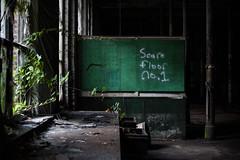 New Leaf  (Explored) (rantropolis) Tags: abandoned lace factory plants summer green graffiti nikon d750 50mm urbex urban exploration