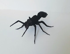 Ant (orig4mi.) Tags: ant origami paperfolding