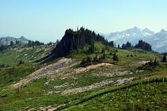 Skyline Trail 1 (jimculp@live.com / ProRallyPix) Tags: mountrainiernationalpark washington nps mountain