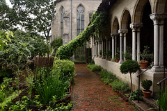 Bonnefont Cloister herb garden in the Rain (Eddie C3) Tags: cloistersmuseumandgardens metropolitanmuseumofart bonnefontgarden nycparks fttryonpark urbanparks washingtonheights gardens