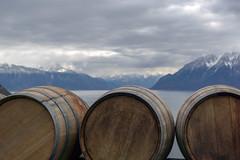 Wine Barrels at Lake Geneva (Bephep2010) Tags: 2017 77 alpen alpha berg bourgenlavaux genfersee grandvaux herbst lacléman lakegeneva sal1650f28 slta77v schweiz see sony switzerland weinfass alps autumn bewölkt cloudy lake mountain winebarrel vaud ch