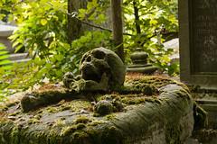 Centrale begraafplaats Brugge (jolandavanwoerkom1) Tags: begraafplaats forest rock tree antoinewemaer wemaer skull pillowgrave graveyart cemetery brugge