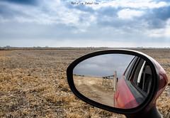 Día de campo. (NatyCeballos) Tags: campo reflection reflejo reflexes espejo airelibre auto car landscape paisaje paisage rural nikond7000 tranquera mirror