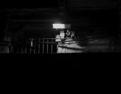untitled (Vilvesh) Tags: cwc chennai weekend clickers gangaaarthi nikond750 nikon24120mm uttarpradesh varanasi people tradition incredibleindia pooja riverganga ganga evening rituals spiritual banksofganga ghats sadhu stadium chennaiweekendlclickers diya water sea dogs monochrome bw archite prayer vedicstudent portrait ocean sky boat bird bay boatman sunrise sun mist sunset tree buffalo bathing beach sand