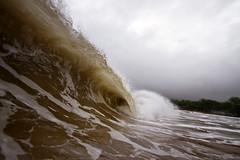 IMG_0271A (Aaron Lynton) Tags: hector hurricane hurricanehector waves shorbreak shorebreak maui hawaii ocean zones fun barrel barreling luckywelivehawaii