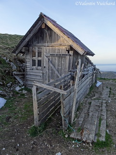 SF_DSC05288 - Col du Chamois, Sheperd's hut, Gruyère region - Switzerland