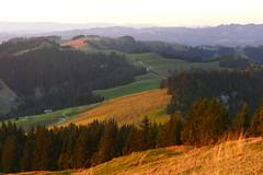 Auf dem Wachthubel (1414m, Schangnau, Marbach, Eggiwil) kurz vor Sonnenuntergang (Martinus VI) Tags: emmental eggiwil schangnau kanton de bern canton berne berna berner bernese schweiz suisse suiza switzerland svizzera swiss y180812 martinus6 martinus6xy martinusvi martinus 12082018
