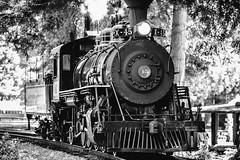 Locomotive Breath (Thomas Hawk) Tags: america california campmendocino mendocinocounty skunktrain usa unitedstates unitedstatesofamerica bw locomotive train fav10 fav25 fav50