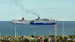 18 08 10 Oscar Wilde and Stena Europe Rosslare (3) (pghcork) Tags: irishferries stenaline oscarwilde stenaeurope rosslare ireland ships shipping ferry ferries carferry