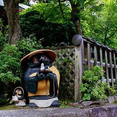 Untitled (richardhwc) Tags: hasselblad 500cm kodak portra400 itsukushima hiroshima japan carlzeiss planar 80mmf28 mediumformat 120 6x6 film