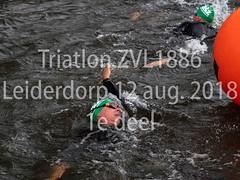 Triatlon ZVL-1886 Leiderdorp 12 aug. 2018 1e deel  nr 6.jpg (waterpolo photos) Tags: 2018 leiderdorp dezijl zvl1886 12aug2018 swimming zwemmen river sport triatlon rivier triathlon nederland netherlands