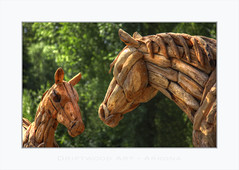 Driftwood Art (Fr@nk ) Tags: img0358horsesdefkl rügen germany art driftwood deutschland island horses europe animals wood summer travel smile green blue topf25 topf50 rec0309 rec2609