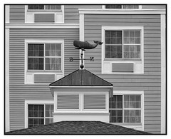 A Night in the Whaling City (Timothy Valentine) Tags: 2018 0818 window gallivanting whale ourhotel hrsw weathervane fbpost silverefex blackandwhite cupola newbedford massachusetts unitedstates us wednesday
