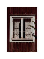 LW V (*TimeBeacon*) Tags: window curtains wall wooden texture abandoned rural building old red falu tb shadow leaves branches decay