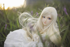 Maybe the world could be ours (Sugar Lokifer) Tags: oasisdoll natalie hybrid sqlab bjd ball jointed doll resin girl