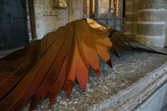 Resting Wing, Diane MacLean (Sculptor), Chichester Cathedral, West Sussex (f1jherbert) Tags: sonya68 sonyalpha68 alpha68 sony alpha 68 a68 sonyilca68 sony68 sonyilca ilca68 ilca sonyslt68 sonyslt slt68 slt dianemacleansculptorchichestercathedralwestsussex chichesterwestsussexengland westsussexengland chichesterengland westsussex chichesterwestsussex dianemacleansculptorchichestercathedral dianemacleanchichestercathedral dianemacleansculptor chichestercathedral dianemaclean diane maclean sculptor chichester cathedral west sussex