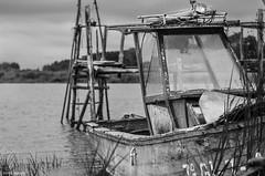 embarcadero 2 (tomas.alonso) Tags: ship water old wood pier embarcadero