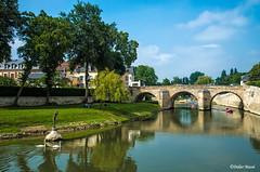 L'Oise et le pont du Cabouillet (didier95) Tags: lisleadam isleadam oise riviere paysage paysageurbain pont valdoise iledefrance reflet ville architecture