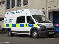 West Midlands Police Peugeot Boxer Multi-Cage Dog Unit BV16 PZG (OPS242), Chelmsley Wood Police Station. (Vinnyman1) Tags: west midlands police peugeot boxer multicage dog unit ops242 bv16 pzg canine ops operations wmp response emergency services service rescue 999 england uk united kingdom gb great britain op operation chelmsley wood station solihull open day 2018