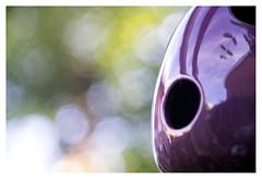 Breathing bokeh (leo.roos) Tags: a7 t38028fedetude focusinghelicoidtrioplan10028 exakta adaptedtom42 projectorlens этюдпроектор projectionlens russianlenses sovietglass darosa leoroos purpleandgreen