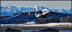 RA-82079 Volga-Dnepr (Bob Garrard) Tags: ra82079 volgadnep antonov an124 cargo freighter anc panc vortice