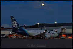 N627AS Alaska Airlines Cargo (Bob Garrard) Tags: n627as alaska airlines cargo full moon anc panc boeing 737 700