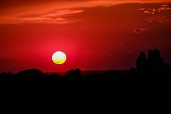 Atardecer rojo (ameliapardo) Tags: atardeceres cielo cielorojo sol nubes sevilla andalucía españa fujixt1
