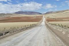 on the road in Peru / Maras Moray Chinchero Valle Sagrado (roli_b) Tags: road street peru valle sagrado sacred valley maras moray chinchero 2018 july landscape landwirtschaft hügel panoramic view vista panorama pinien