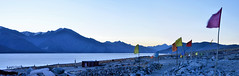 Pangong Tso at Dawn..... A Panorama (pallab seth) Tags: panorama bluehour dawn pangongtso lake landscape photo leh ladakh india travel tour nature himalayas mountain campsite photography indianlandscapephotography flags