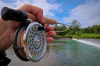 Flyfishing on a summer day