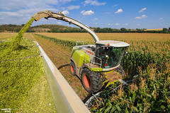 Corn Silage 2018 | CLAAS (martin_king.photo) Tags: mais corn cornsilage maisfeber 2018harvestseason summerwork powerfull martin king photo machines strong agricultural greatday great czechrepublic welovefarming agriculturalmachinery farm workday working modernagriculture landwirtschaft martinkingphoto machine machinery field huge big sky agriculture tschechische republik power dynastyphotography lukaskralphotocz day fans work place harvester forage clouds claas claasjaguar inaction action worker eos new weather flickr