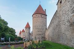 Four Towers - West Side - Tallinn - Blue Hour (BlueVoter - thanks for 2.1M views) Tags: tallinn estonia eesti tower medieval wall