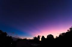 Purpurlicht (Rita Eberle-Wessner) Tags: sky himmel sonnenuntergang sunset purpurlicht dämmerungsstrahlen crepuscularrays dämmerung dusk abenddämmerung bürgerlichesämmerung