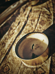 Burned down (PHOTOGRAPHY Toporowski) Tags: alter firstimpressions sonnenuntergang macro reflection schatten reflektion alt makro garden schärfentiefe bokeh abstrakt contrast sunset garten eschweiler nrwnordrheinwestfalen deutschland deu