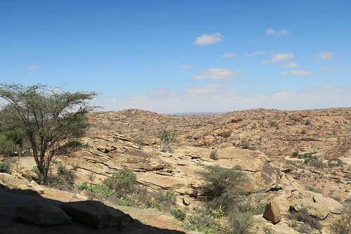 Surrounding Desert