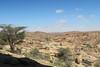 Surrounding Desert (John Pavelka) Tags: lasgeel somaliland somalia desert rocks acacia scrub africa
