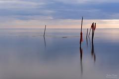 Fishing Poles (Johan Konz) Tags: sea water sky cloud serene pastel red flag fishing pole waterscape seascape outdoor edam markermeer netherlands nikon d7500 le longexposure