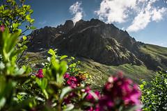 Cornone di Blumone. (Alessandro.Capuzzi) Tags: brescia bagolino blumone adamello alps mountain sony sonyalpha samyang fisheye