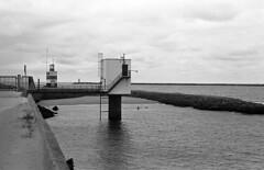 Dipping (Arne Kuilman) Tags: kosmofoto kosmofotomono iso100 contax zeiss 50mm 50mmf17 slr film homedeveloped pyrocathd 11minutes developed developer netherlands nederland